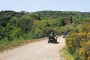 No.1 Quad Safari in Crete