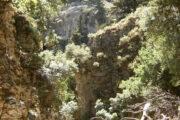 Imbros Gorge - Crete tour